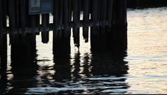 SF Fort Mason Pier Piling MVI 3488 Stock Footage