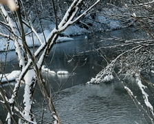 River in Winter Forest  Stock Footage