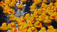 Stock Video Footage of Carnival Game Plastic Ducks ED