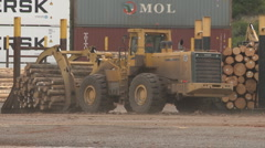 Lifted logs on loader Stock Footage