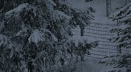Snow falling Stock Footage