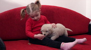 Stock Video Footage of little girl feed pet dog