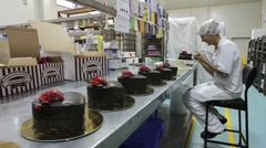 Timelapse of cake decorating at a commercial bakery Stock Footage