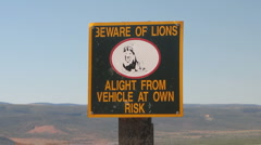 Beware of the Lion - stock footage