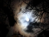 Stock Video Footage of Scary Full Moon timelapse