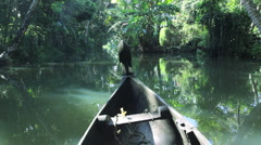 Traditional Local canoe passing along the backwaters, nr  Alleppey, Kerala India - stock footage