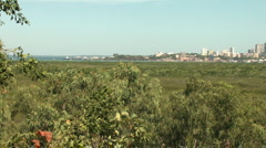 Darwin city pan long shot Stock Footage