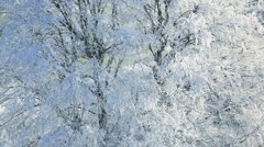 Frozen Landscape of trees nr  Wotton Under Edge Cotswold, Glos  Stock Footage
