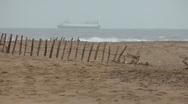 Stock Video Footage of Sandy beach with storm battered wood and wire fence, cargo ship on horizon