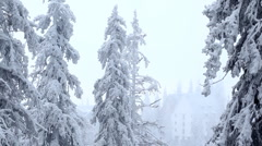 Winter Stock Footage