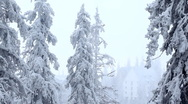 Stock Video Footage of Winter