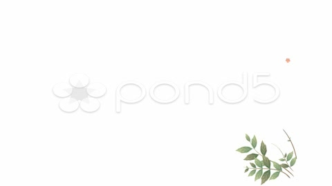 After Effects Project - Pond5 Organic postcard 1093602