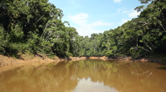 Traveling along an Amazonian river Stock Footage