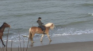 Stock Video Footage of Horse riding near the coastline