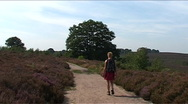 Stock Video Footage of National Park de Sallandse Heuvelrug, walking women