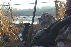 Duck Hunting Stock Footage