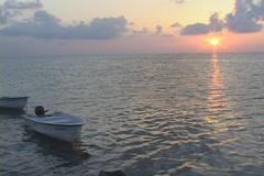 Saltwater Fishing Sunrise Stock Footage