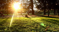Stock Video Footage of Lawn sunset