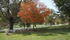 Arlington National Cemetery Grave Pan Stock Footage
