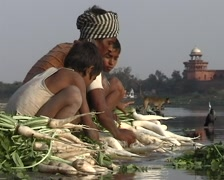 Washing vegetables at the Taj Mahal - stock footage
