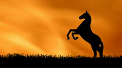 Horse Silhouette 4 Stock Footage
