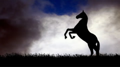 Horse Silhouette 6 Stock Footage