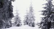 Winter Stock Footage