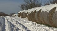 Bales of straw covered in snow. Stock Footage