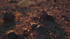 Stock Video Footage of POV Walking In Rocky Desert at Dusk 1