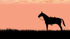 Horse with tack silhouette - stock footage