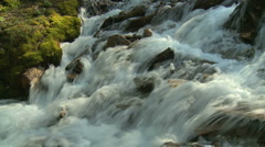 Mountain stream with moss  Stock Footage