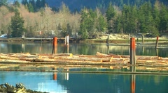 Floating log Boom between Steel pilings (zoom out) reveals mountain Scenery - stock footage