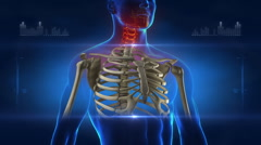 Skeleton medical x-ray scan Stock Footage