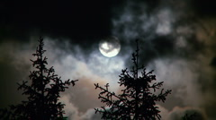 Full moon, pine trees and clouds at night - stock footage