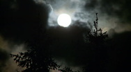 Stock Video Footage of Full moon, pine trees and clouds at night