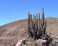 Colca Canyon landscape Stock Footage