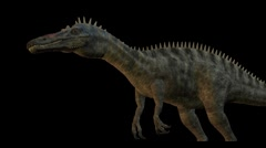 Suchomimus on transparent background Stock Footage