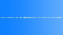 Wild Turkey Vocals - sound effect