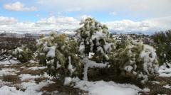 Snowy Desert Scenic Stock Footage