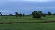 Stock Video Footage of Train ride, landscape with ricefields