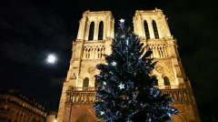 Notre Dame Cathedral, in front of christmas tree - stock footage