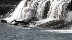 Falls and Log Stock Footage