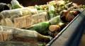 Tequila Bottle into Recycling Bin GFHD Footage