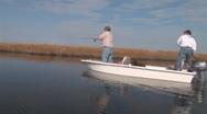 Stock Video Footage of Redfish Saltwater Fishing