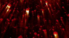 Rose Petals 02 - stock footage