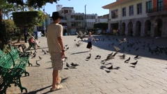 Kids Chasing Pigeons (HD) co Stock Footage