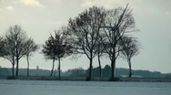 Stock Video Footage of Street with wind generator and trees in winter