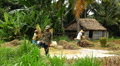 Workers in Rice Fields, Paddy Field, Palm Trees, Bali, Indonesia Footage
