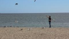 Girl Feeding Sea Gulls (HD) k Stock Footage