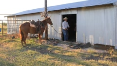 Cowboy and horse next to a shed (HD) k Stock Footage